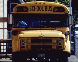school bus cd